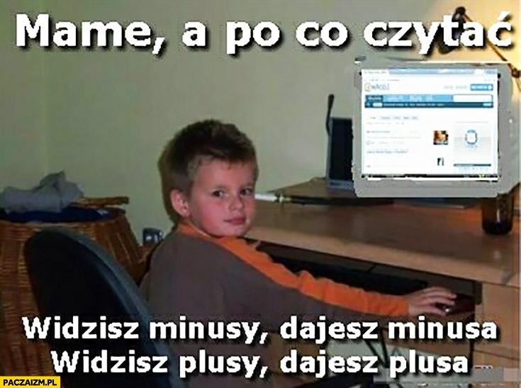 2345110-piquN.jpg