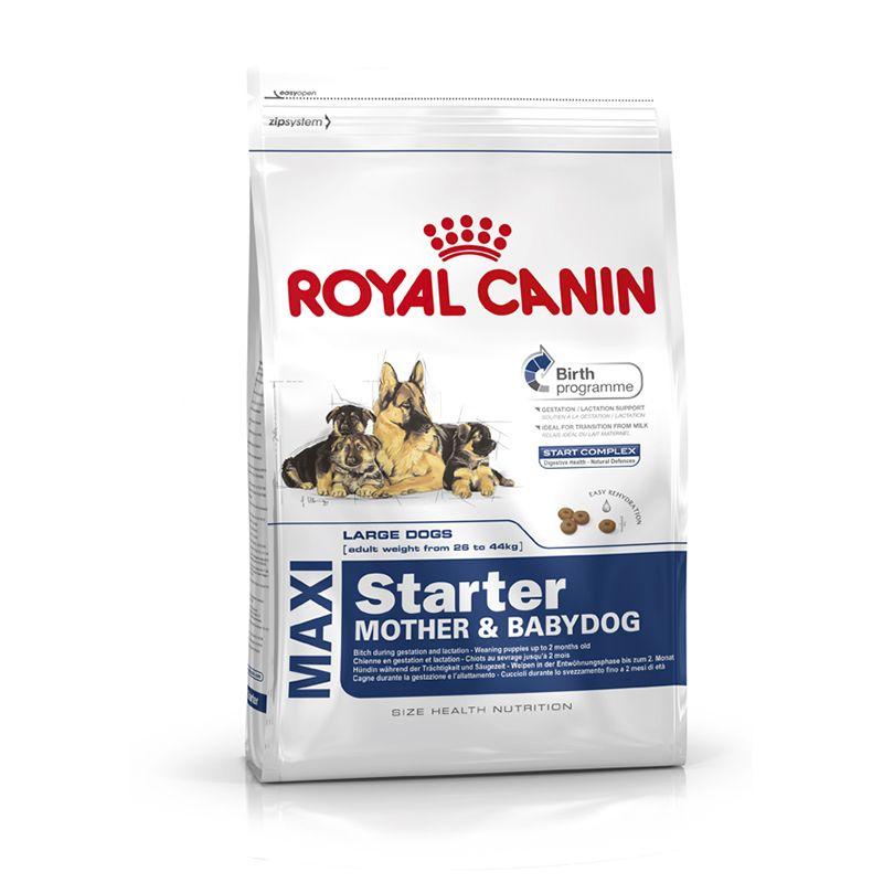 ROYAL CANIN Maxi Starter Mother & Babydog 4kg w super cenie 59,34zł! Taniej aż 40%!