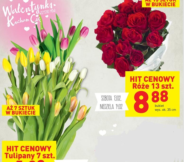 Róże 13 szt. za 8,88zł, tulipany 7szt. za 6,88zł @ Lidl