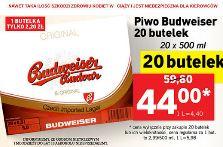 20 butelek piwa Budweiser za 44zł @ Lidl