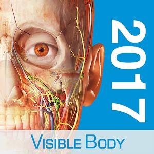 Human anatomy atlas 2017 -96%
