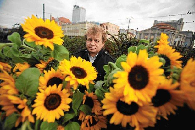 6 tysięcy sadzonek słoneczników (Katowice) @ Słonecznik Patrol