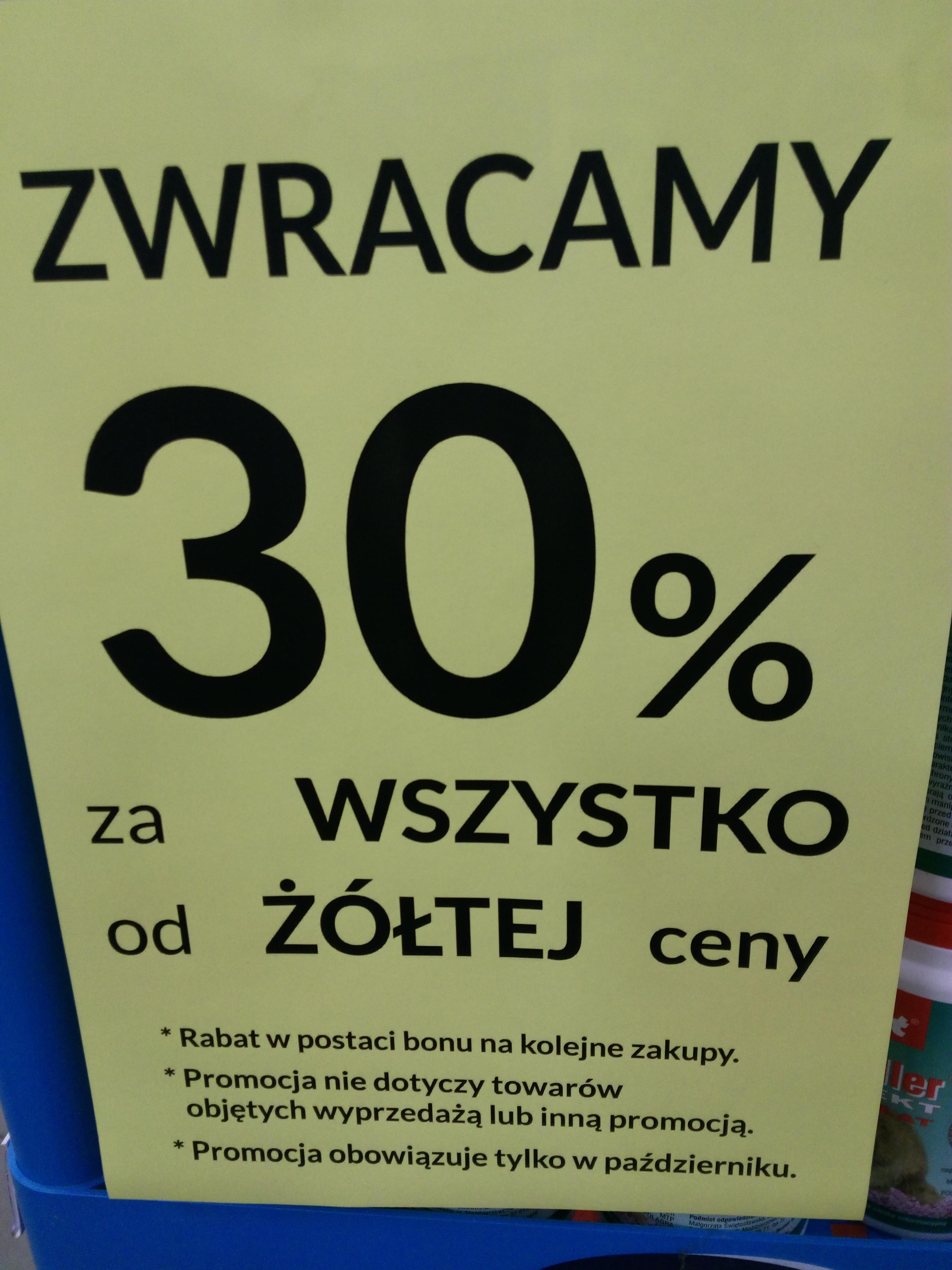 MAJSTER  w Rzeszów / Bełchatów  / Mielec zwraca 30% w bonach