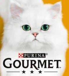 Biedronka Karma dla kota Gourmet 4+4 ok 40% taniej