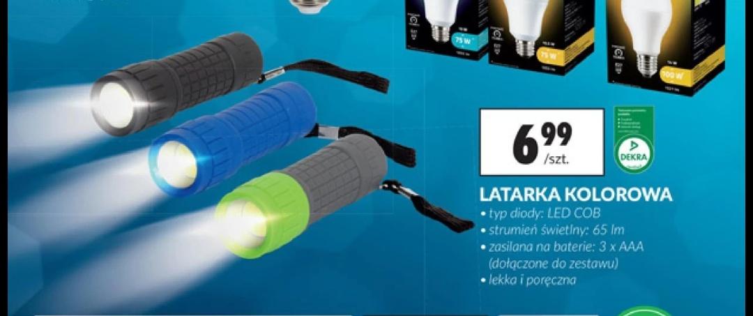 Minilatarka LED z Biedronki