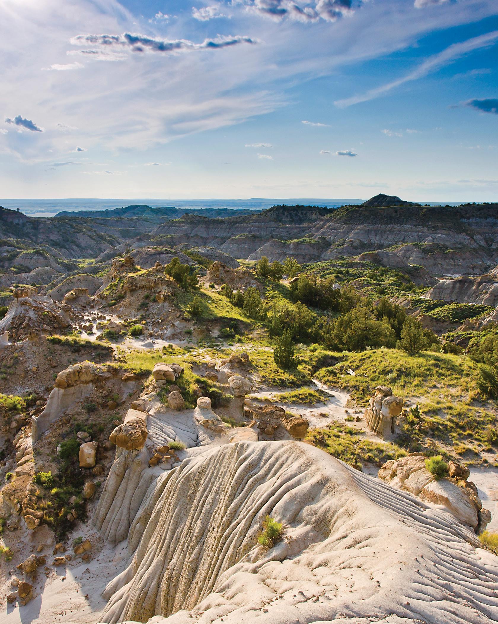 Bezpłatny przewodnik po Montanie (USA) i mapy parków narodowych Yellowstone i Glacier