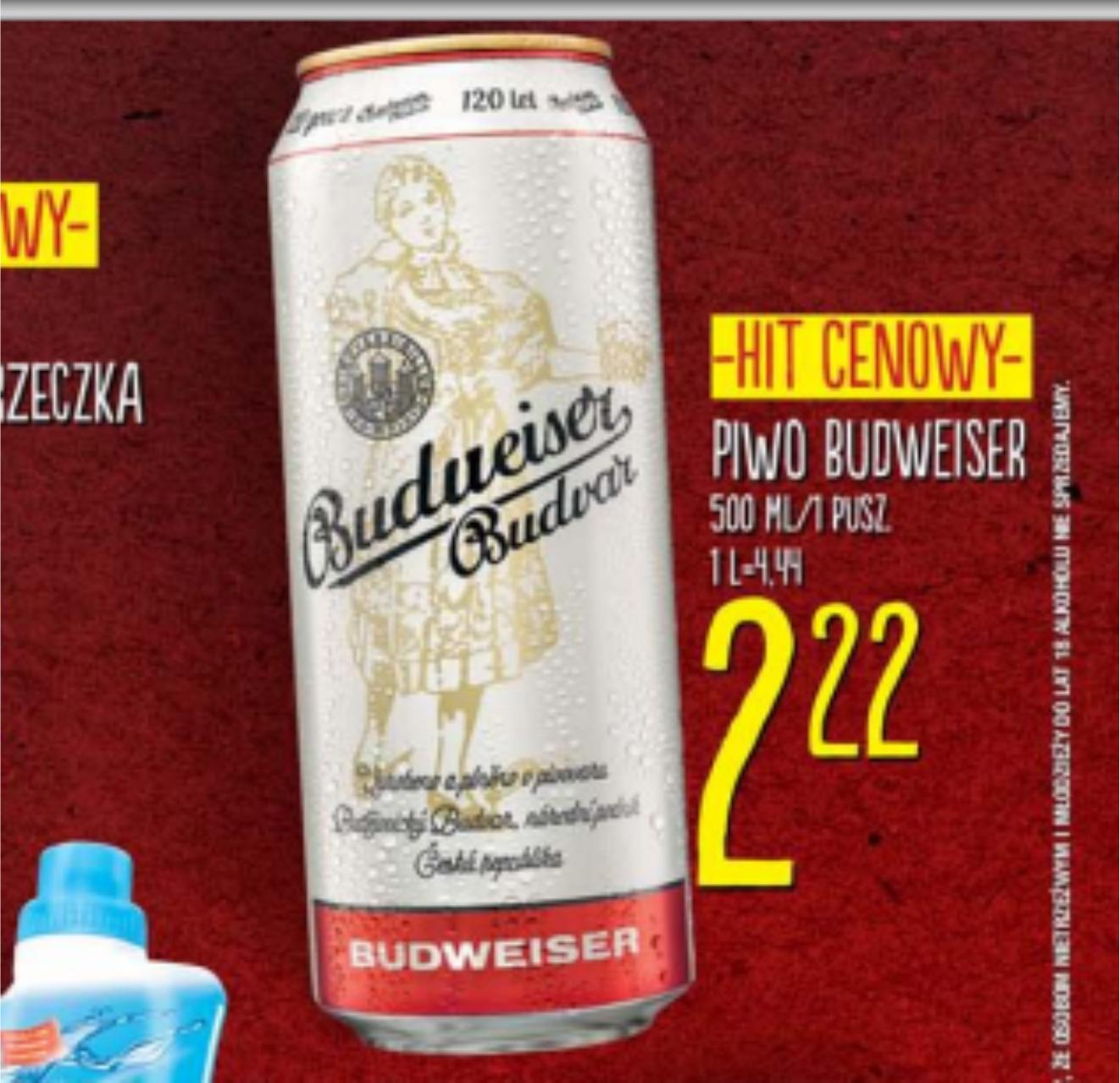 Piwo Budweiser puszka LIDL