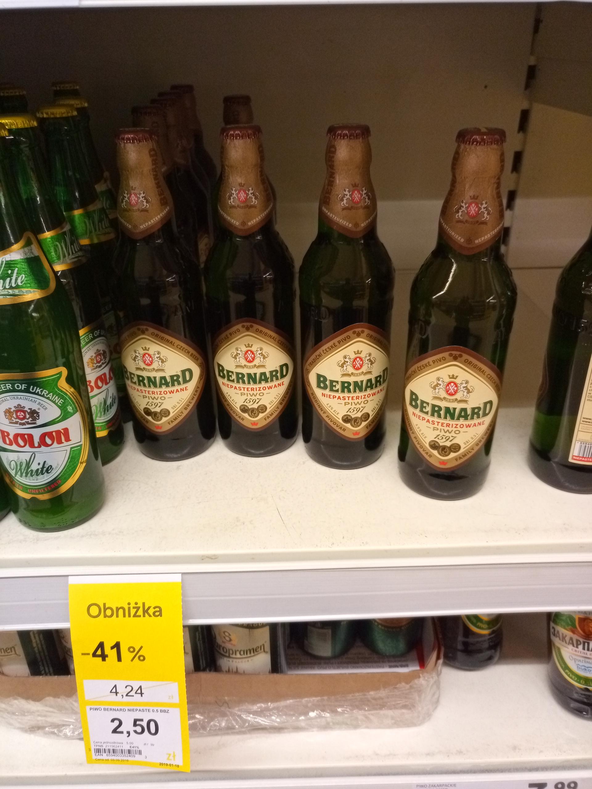 Piwo Bernard w Tesco