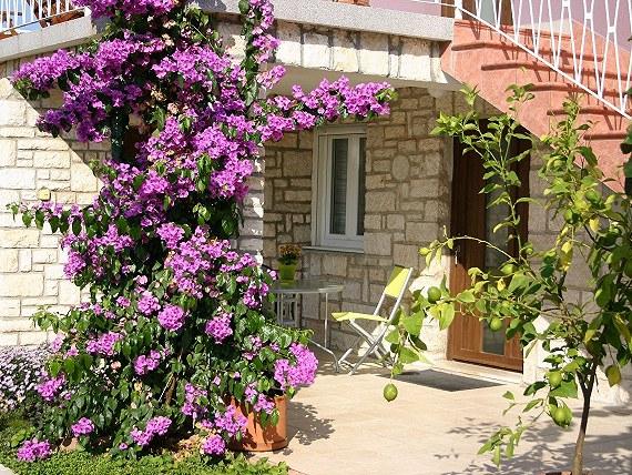 Błąd cenowy Chorwacja Istria 7dni 27.06-04.07
