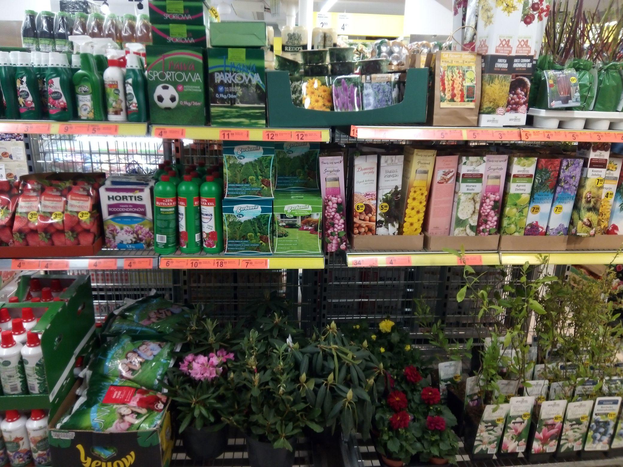 Kwiaty ,i inne rośliny ogrodowe ,ozdobne,przeceny @biedronka