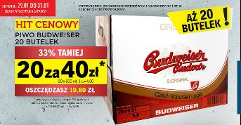 LIDL - 20 piw Budweiser za 40zł