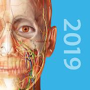 Atlas Anatomii Człowieka 3D Google Play Android 2019 w języku angielskim, hiszpańskim, francuskim, niemieckim, włoskim, japońskim i chińskim
