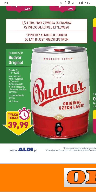 Budweiser beczka 5 litrów w Aldi od 17.06