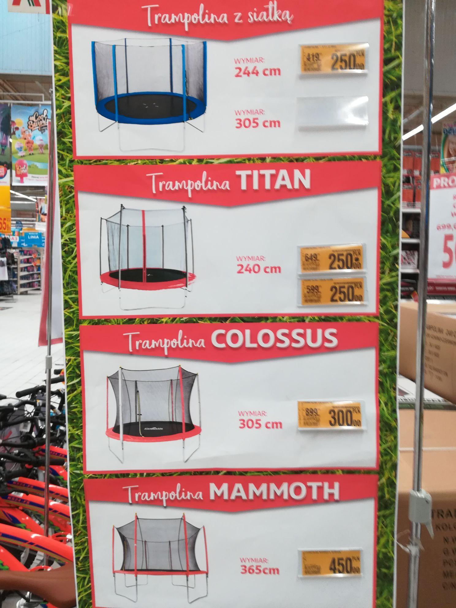 Trampolina Colossus sr 305cm Auchan katowice DTS