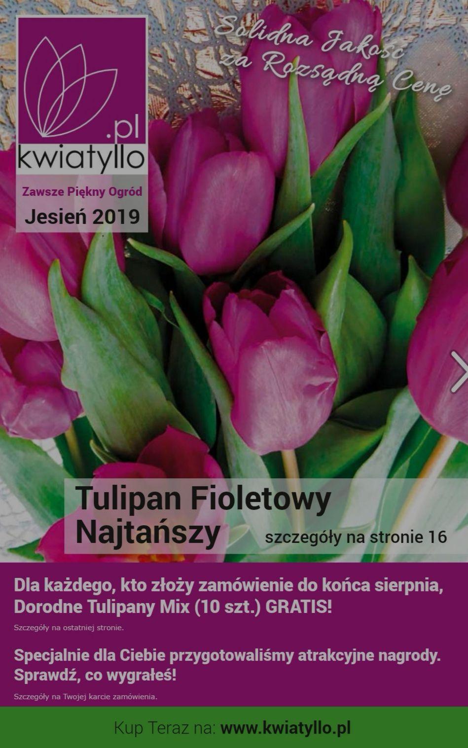Darmowy katalog kwiatów
