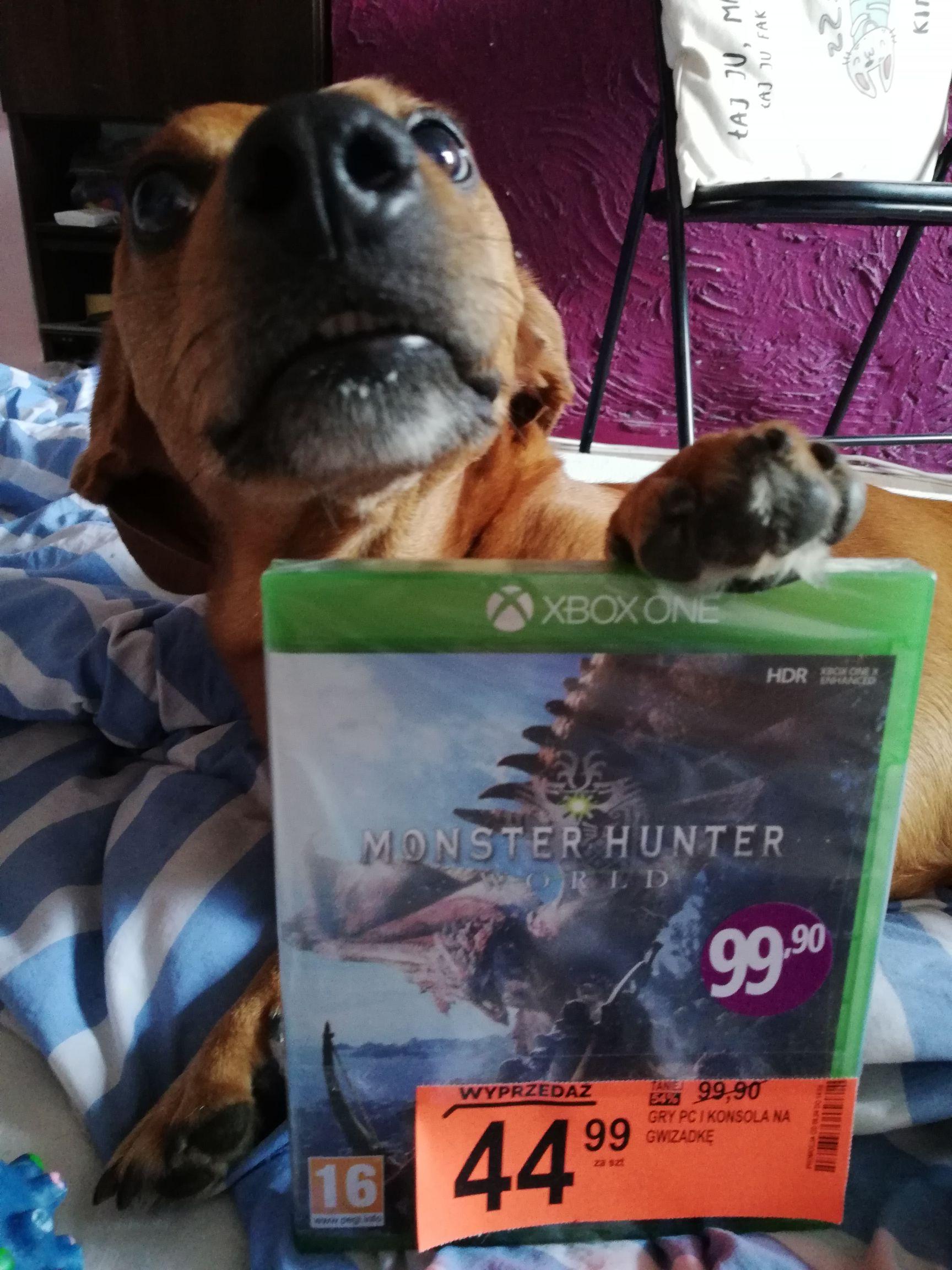 Wyprzedaż na Monster Hunter i inne gry na pc i konsole w Biedronce