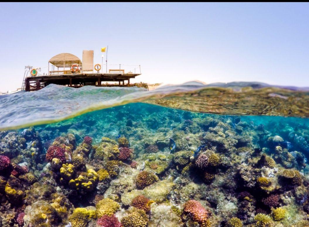 Last minute All inclusive 4*Hotel spa przy Egipskiej plaży 1405zl/osoba od 5.09 do 12 09