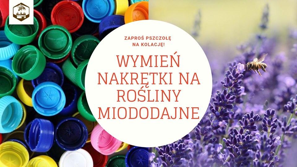 [Kraków] Wymień plastikowe nakrętki na rośliny miododajne