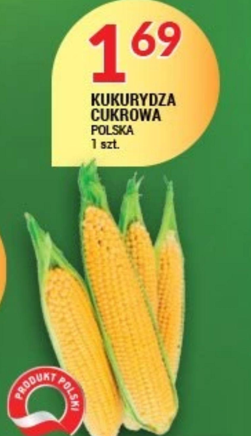 Kukurydza Cukrową Polska 1.69/1szt Piotr i Paweł  od 10 do 14