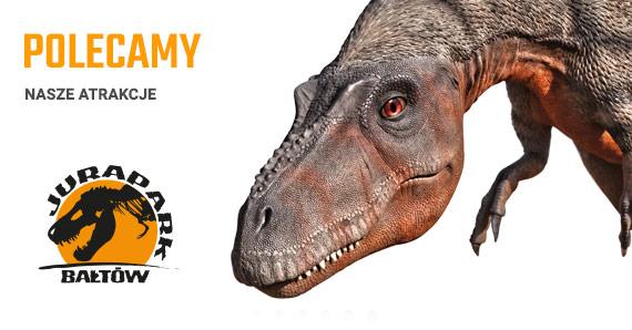 -50% Park Dinozaurów (Bałtów / Krasiejów / Solec)