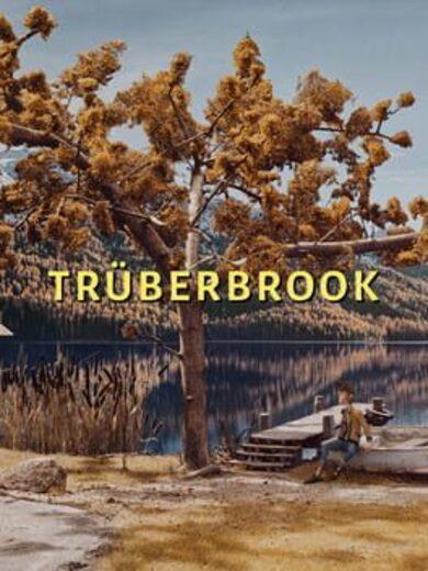 Truberbrook Steam