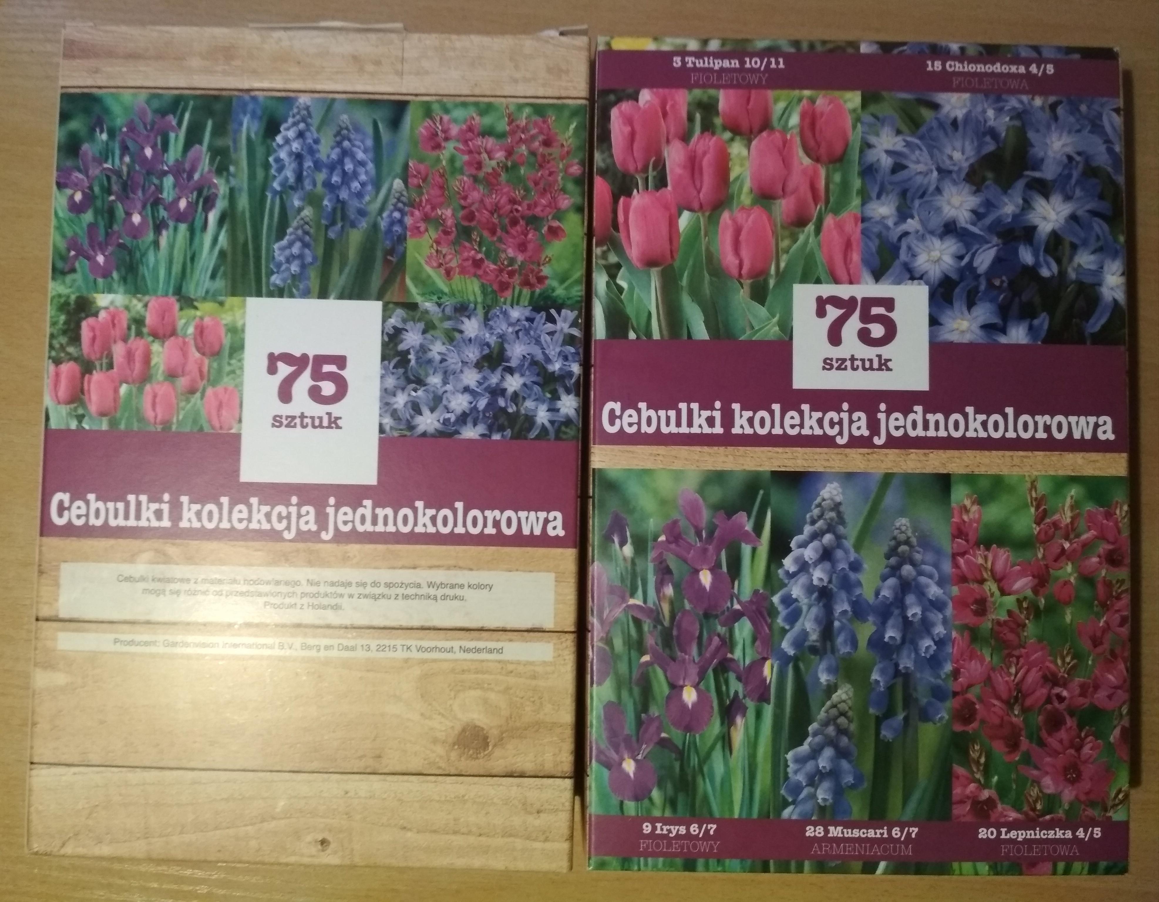 Cebulki kwiatów 75szt/3,99zł @Biedronka