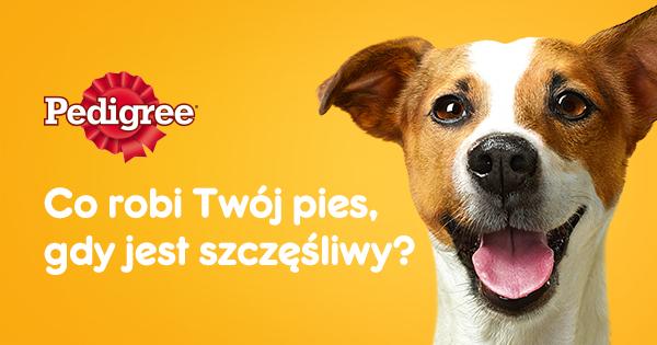 30% zniżki do wykorzystania przy zamówieniu 100 zł w sklepie  Krakvet.pl i Keko.pl