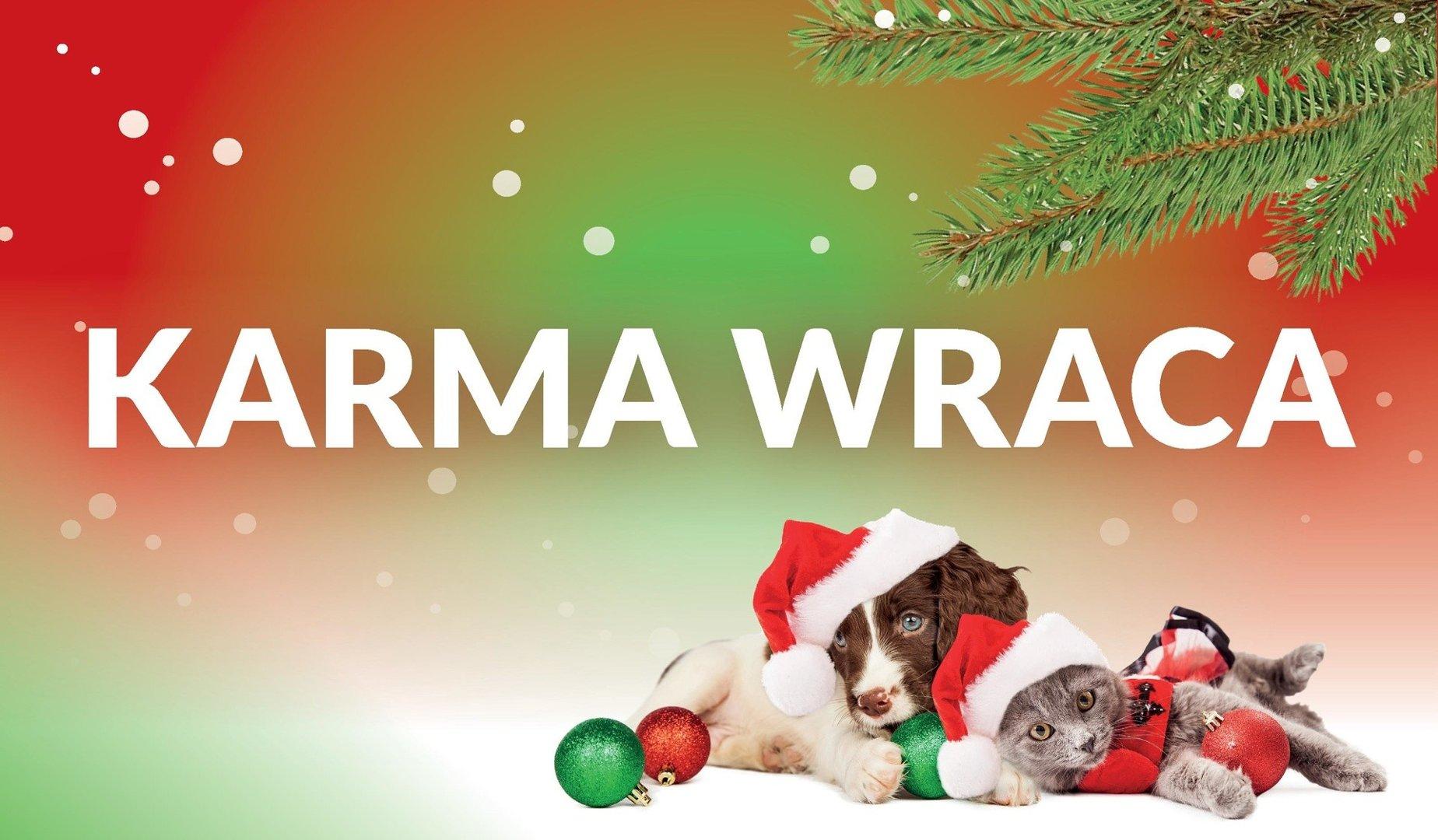 Karma Wraca - Choinka w zamian za wsparcie dla schroniska TORUŃ