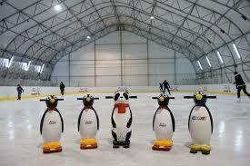 Wejście na lodowisko za darmo po zakupie 3 Kinder Pingui (Pula 20000)
