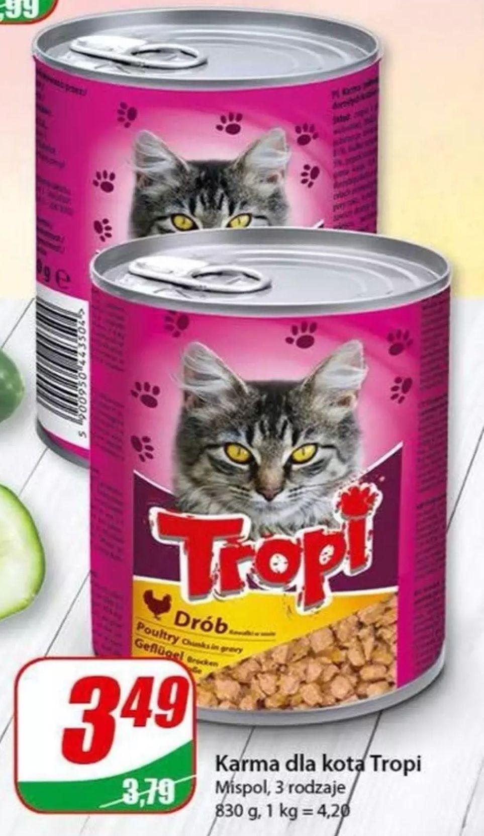 Karma dla kota Tropi w Dino