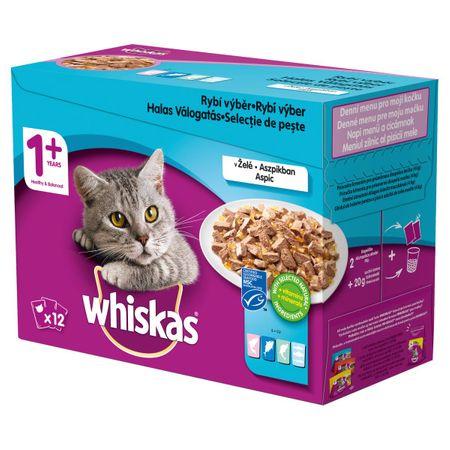 Whiskas Saszetki dla dorosłych kotów wybór ryb w galarecie 48x100 g
