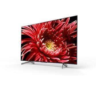 Telewizor Sony KD-55XG8596