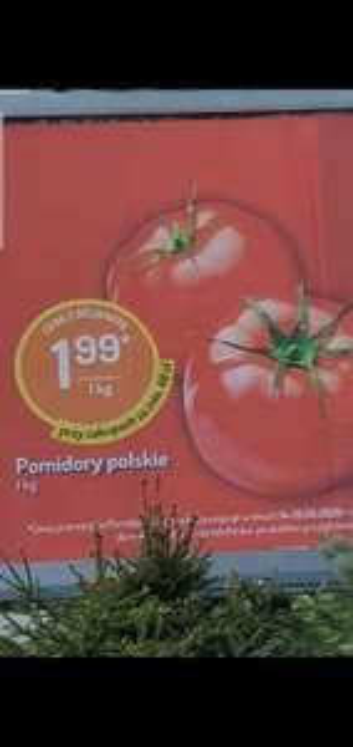 Pomidory 1,99 zł kg !!!! Mila