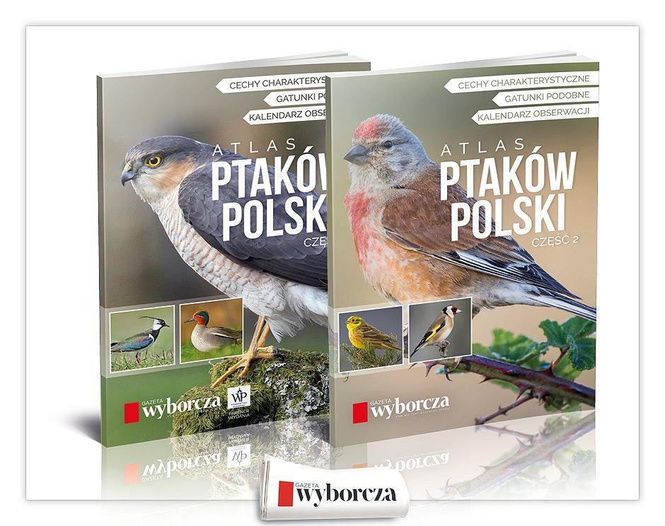Gazeta Wyborcza pakiet podstawowy 62 dni