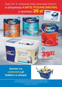 Karta podarunkowa 20PLN za zakup 5l dowolnej farby kolorowej DULUX @ Castorama
