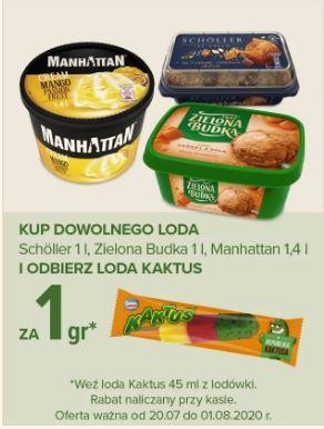 Lód Kaktus 45ml za 1 gr przy zakupie lodów: Zielona Budka, Scholler 1 L lub Manhattan 1,4L w Carrefour od 20 .lipca