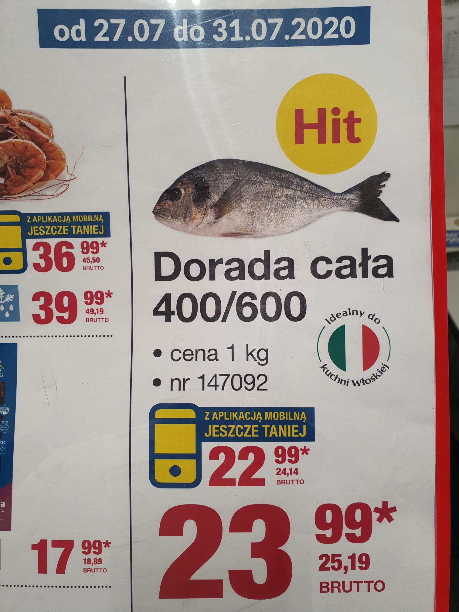 Dorada - świeża ryba - Chorwacja MAKRO