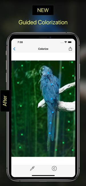 ZA DARMO : Pholorize: Colorize Old Photo - (iOS App)