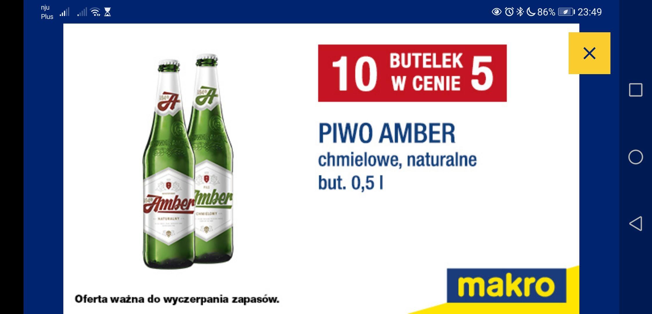 Piwo Amber, 10 butelek w cenie 5