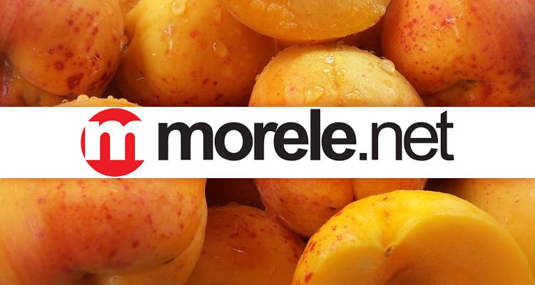 Zbiór okazji na tanie pamięci w Morele