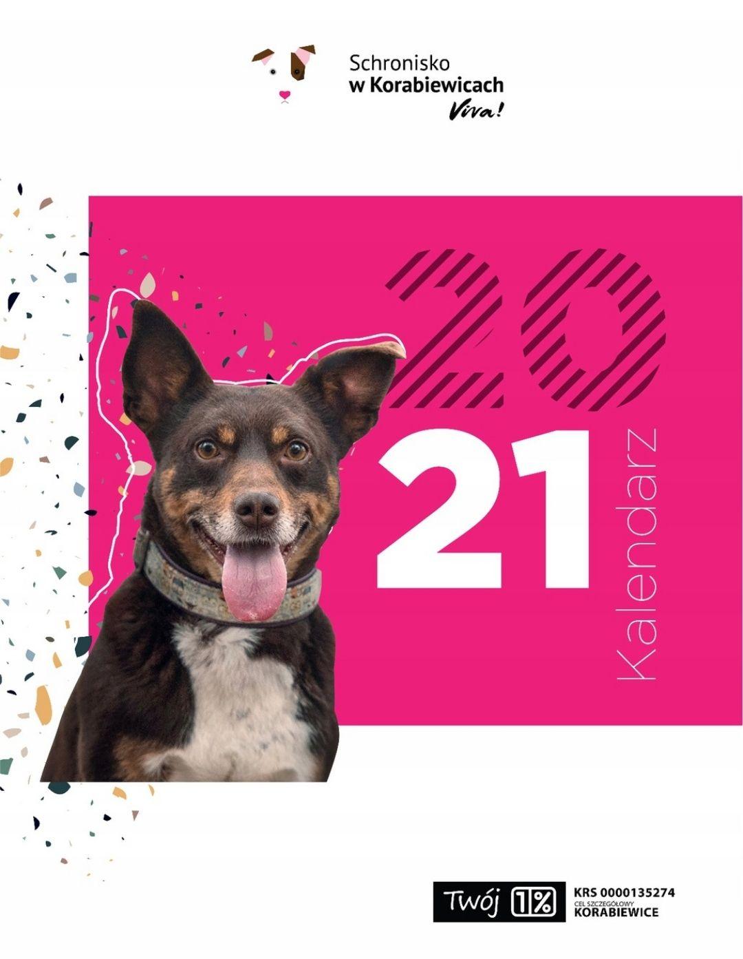 Charytatywny kalendarz ścienny 2021 - 100% na zwierzęta