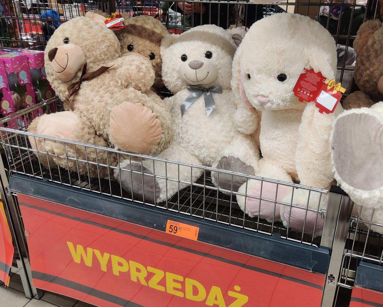 Wyprzedaż niedźwiedzi 80 cm w Biedronce