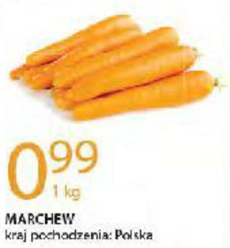 Marchew 1kg. Leclerc (tylko 19.11)