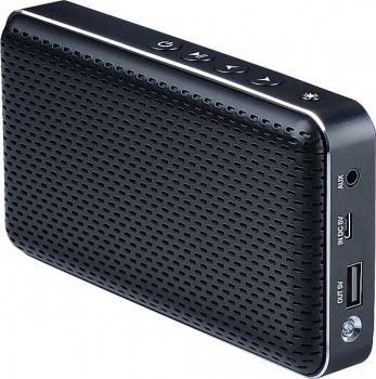 Głośnik BT z funkcją powerbanku Lark Freesound 5.0, w Selgros