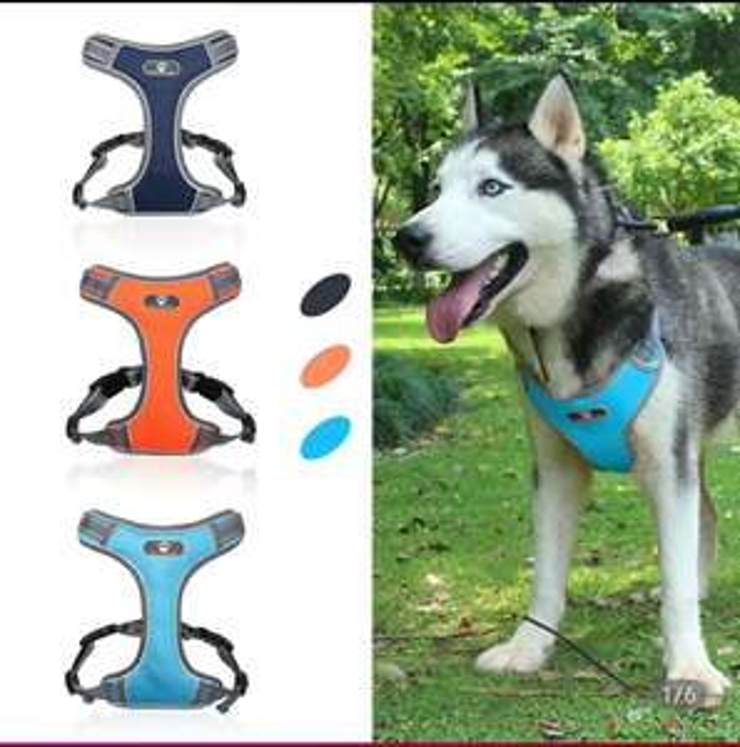 Odblaskowe szelki dla psa typu guard, rozmiar XL