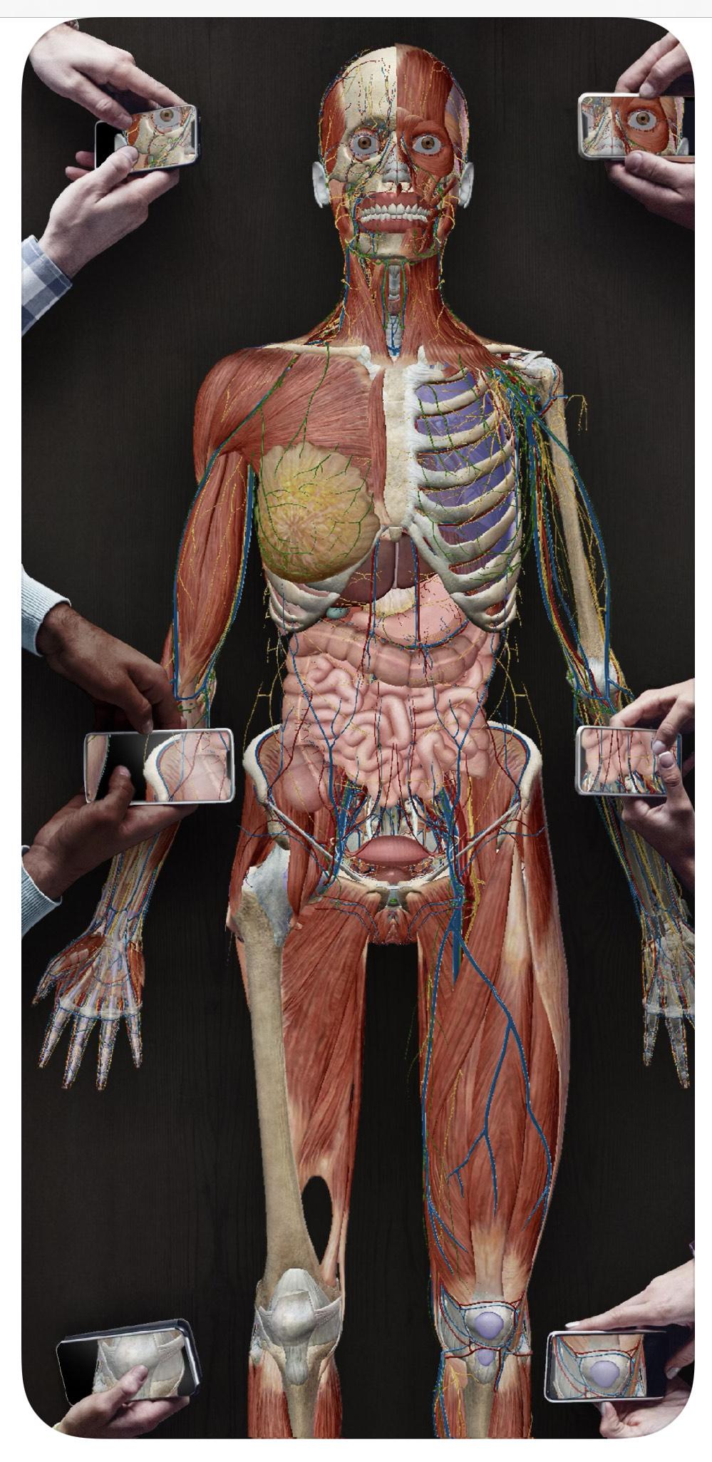 Human Anatomy Atlas 2021 - iOS i Android