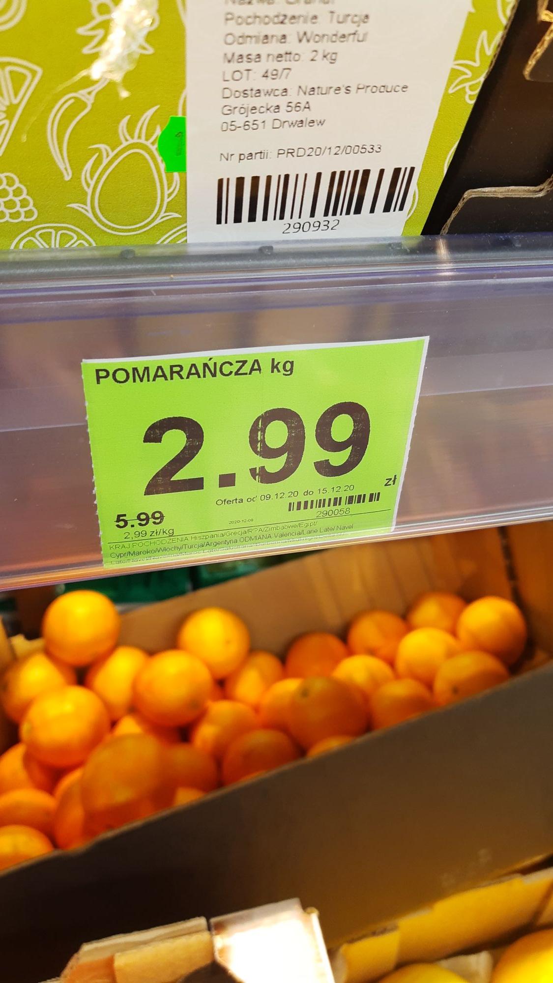Pomarańcze w Dino