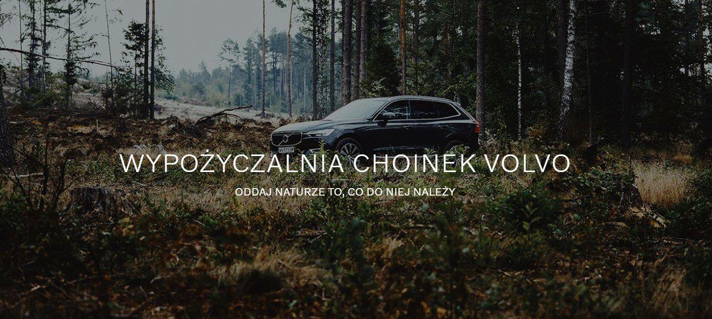 Choinki od Volvo