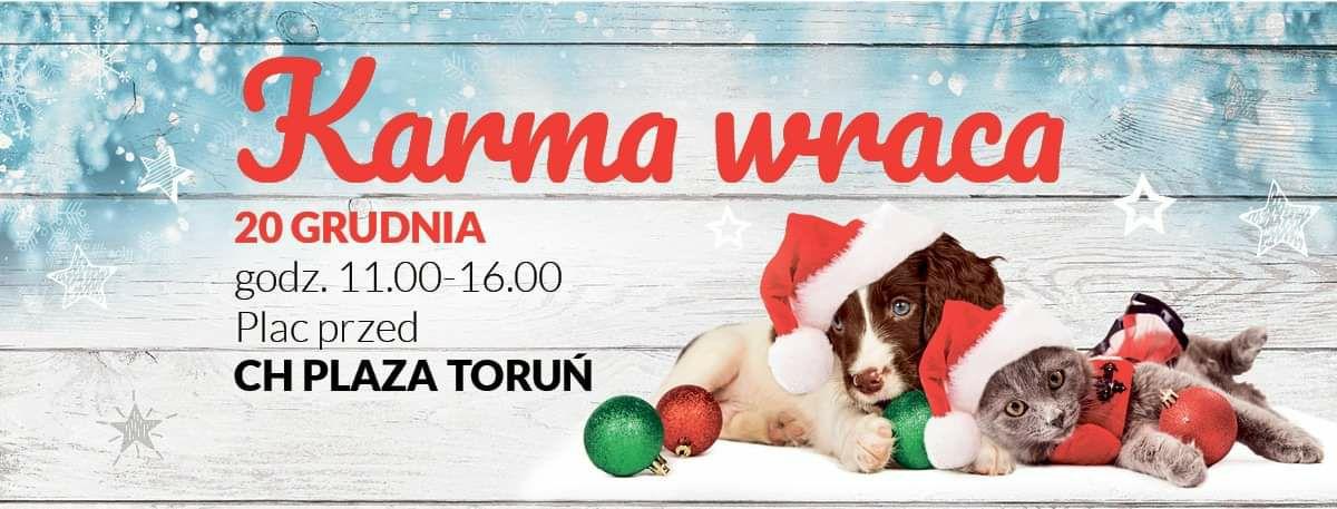 Karma Wraca - Toruń, choinka za pomoc schronisku