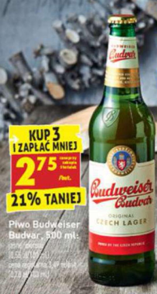 Piwo Budweiser Budvar po 2.75 przy zakupie 3 szt.